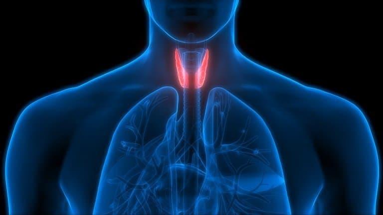 hypothyroidism, T3